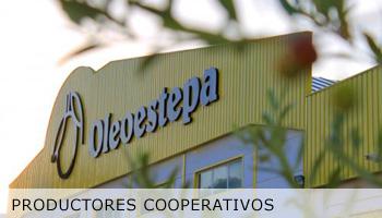 productores_cooperativos_oleoestepa