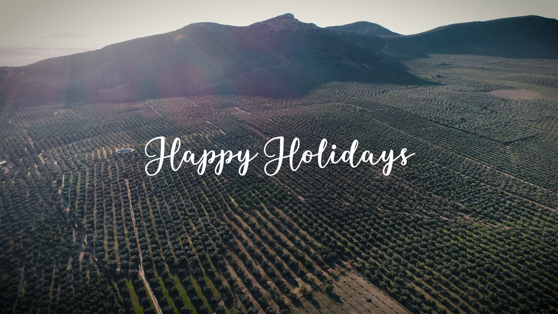 Oleoestepa wishes happy holidays and a magnificient New Year!